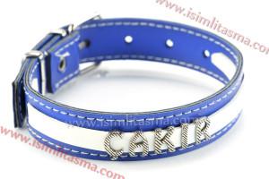 isimli köpek tasma modelleri mavi
